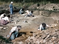 From the Clynick Collection (1980's) - Lufton Dig - 14